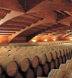 Barrel cellar at Chivite Winery, Cintruénigo